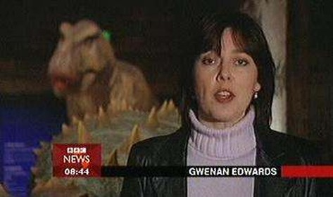 gwenan-edwards-Image-003