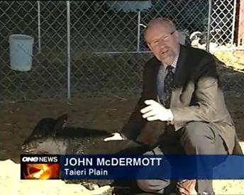 john-mcdermott-Image-001
