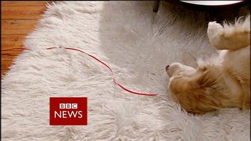 bbc-news-promo-newswatch-40172