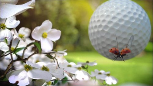 Sky Sports Promo - The Masters 2012 - 3D 04-02 23-07-48