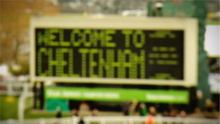 Cheltenham 2013 Promo
