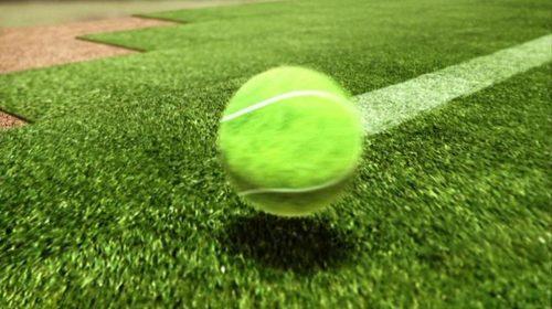 BBC Sport - Wimbledon Titles 2013 (6)
