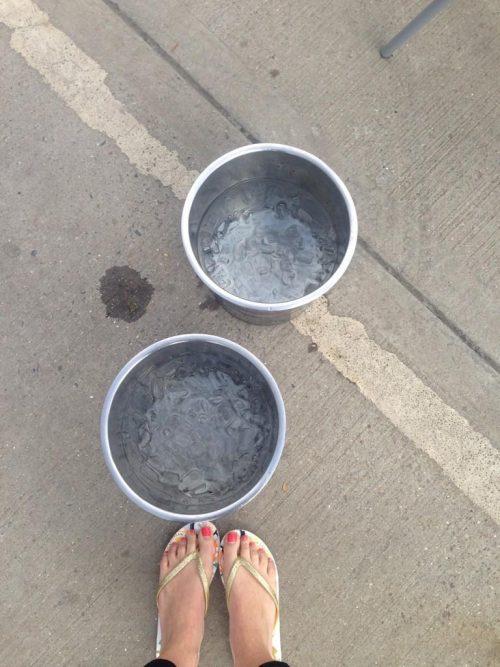 Nat Sawyer Ice Bucket Challege
