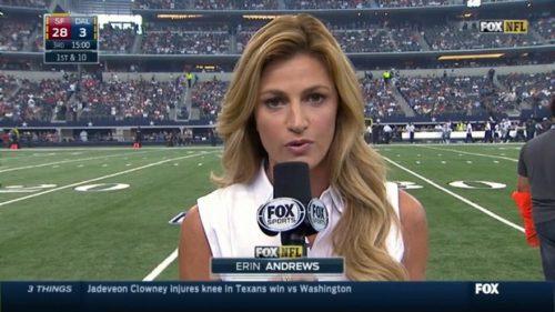 Erin Andrews - NFL on Fox - Sideline Reporter (1)