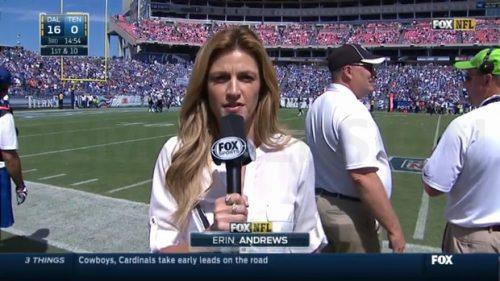 Erin Andrews - NFL on Fox - Sideline Reporter (10)