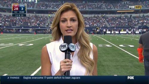 Erin Andrews - NFL on Fox - Sideline Reporter (11)