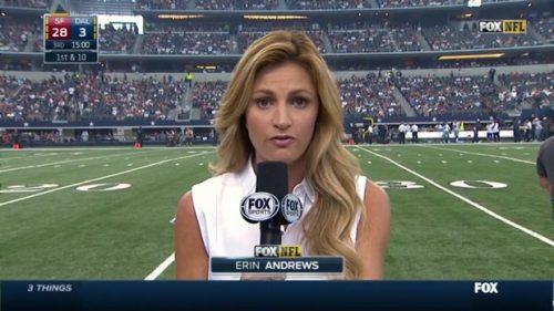Erin Andrews - NFL on Fox - Sideline Reporter (14)