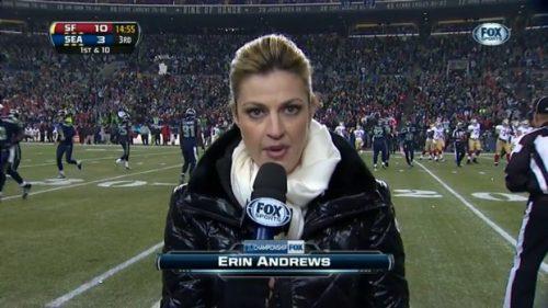 Erin Andrews - NFL on Fox - Sideline Reporter (2)