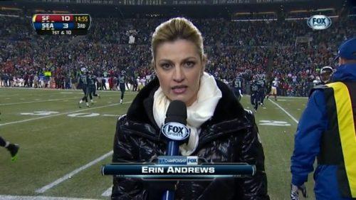 Erin Andrews - NFL on Fox - Sideline Reporter (3)