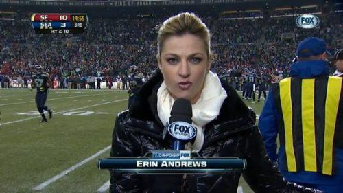 Erin Andrews - NFL on Fox - Sideline Reporter (4)