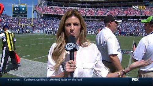 Erin Andrews - NFL on Fox - Sideline Reporter (9)