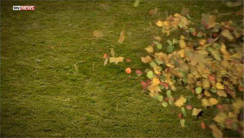 Sky News Promo 2014 - The Autumn Statement 11-29 18-59-33
